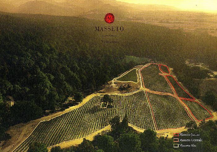 Azienda Vinicola Masseto