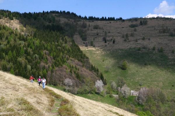 randonnées valle intelvi