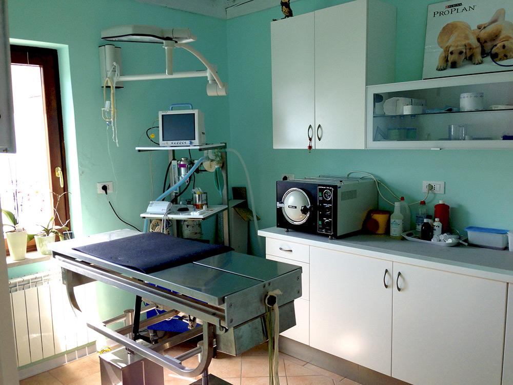 sala chirurgica veterinaria Trieste