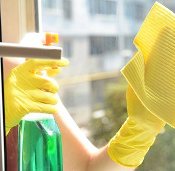 impresa di pulizie geneco roma