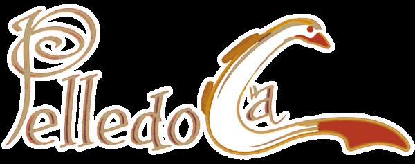 www.pelledocapalermo.it