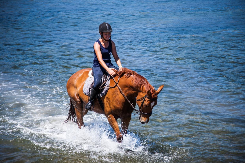 istruttrice equestre olbia