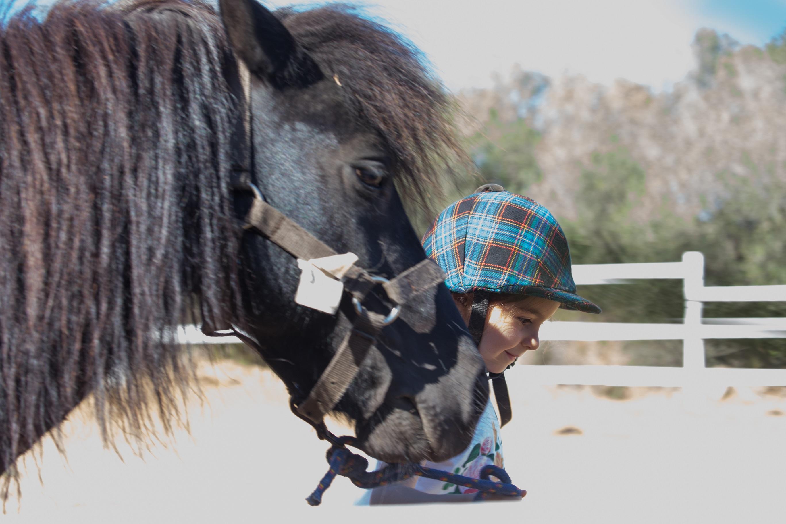 Horse riding Olbia