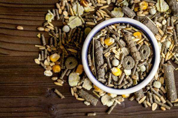 alimenti di qualità allevamento ragusa