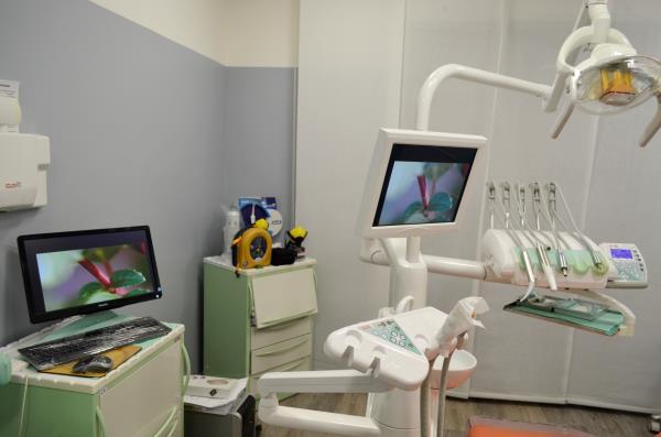 dentista terni