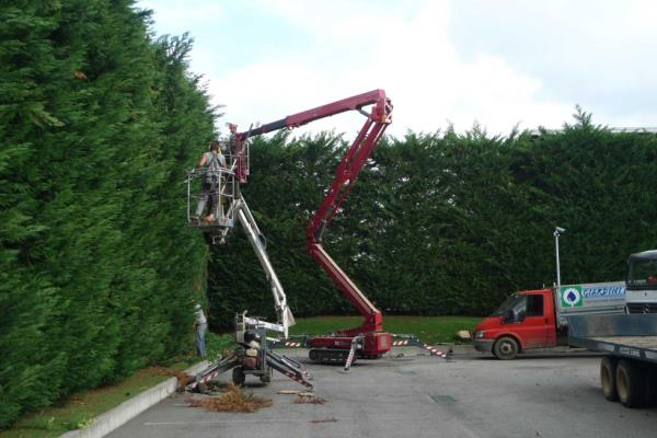 macchine per manutenzione giardini