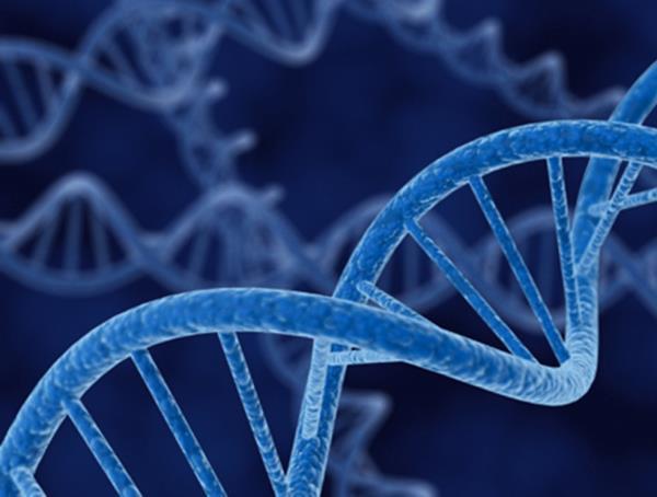 esami biologia molecolare DNA Catania