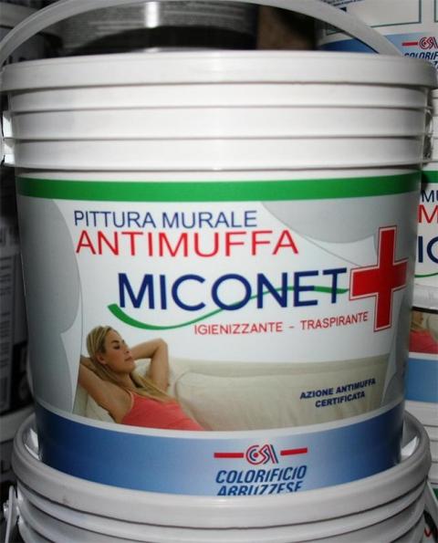Pitture Anti Muffa a Pescara