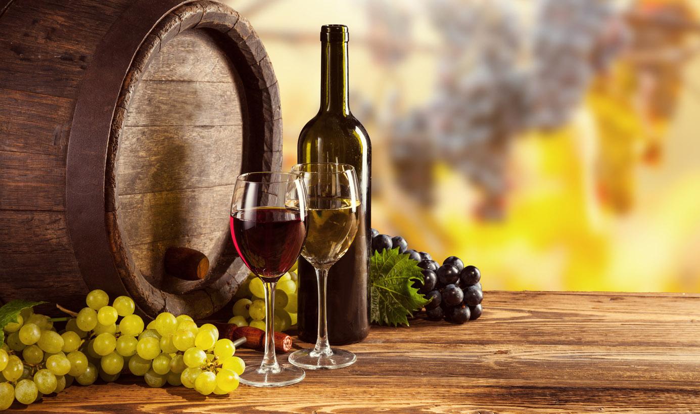 La Vineria della Boba a Pisa