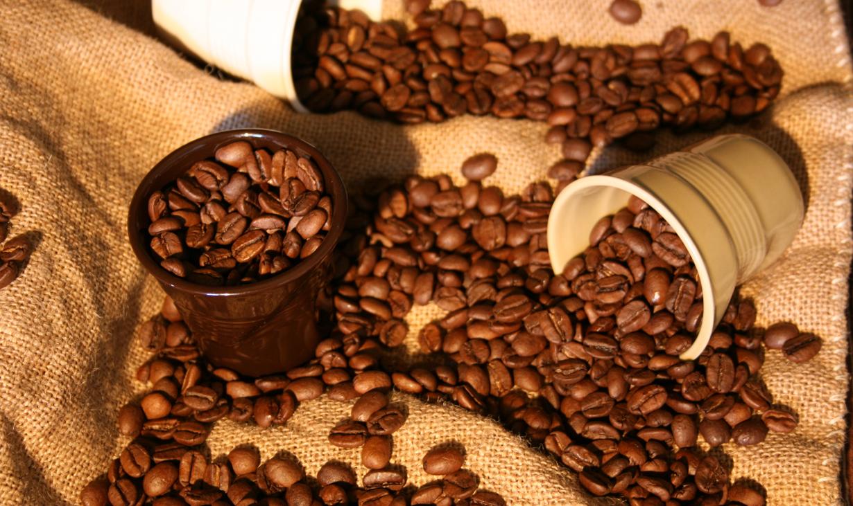 Macchine Da Caffè a Perugia