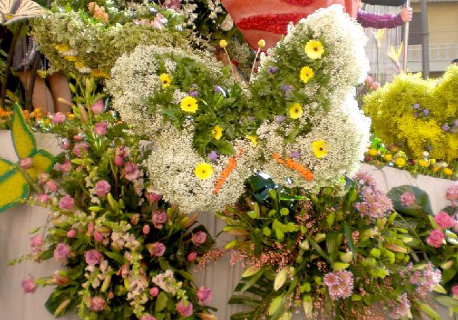 piante e fiori per occasioni speciali ceto bs