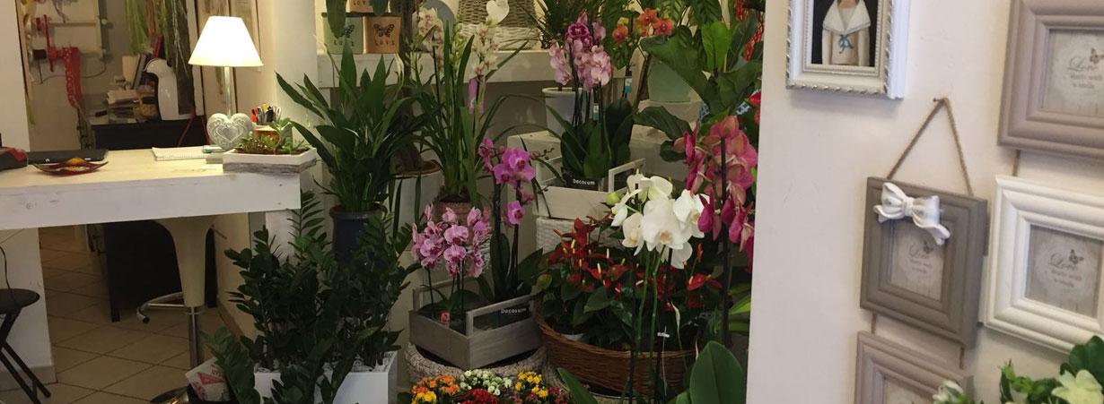 Mazzi di Fiori Tutto Rose e Fiori a Osimo Ancona