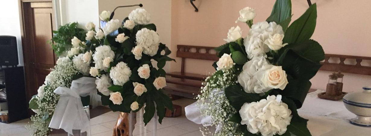 Tulipani Tutto Rose e Fiori a Osimo Ancona