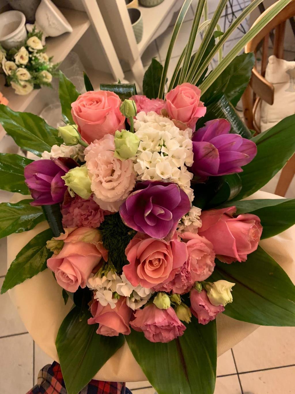 Rose Tutto Rose e Fiori a Osimo Ancona