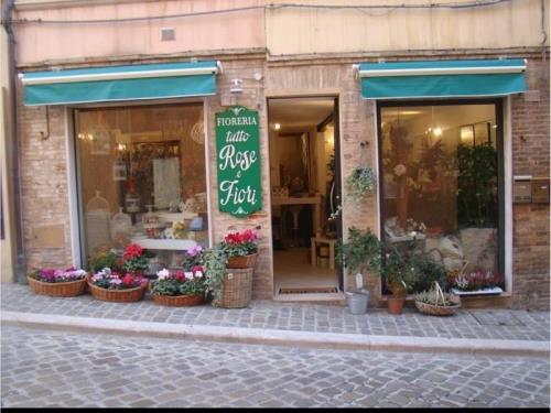 Negozio tutto Rose e Fiori a Osimo Ancona