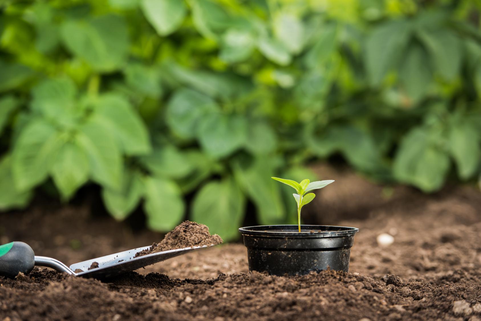Articoli per agricoltura