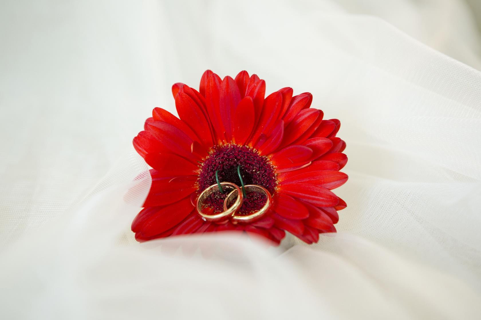 fotografo per matrimoni Trieste