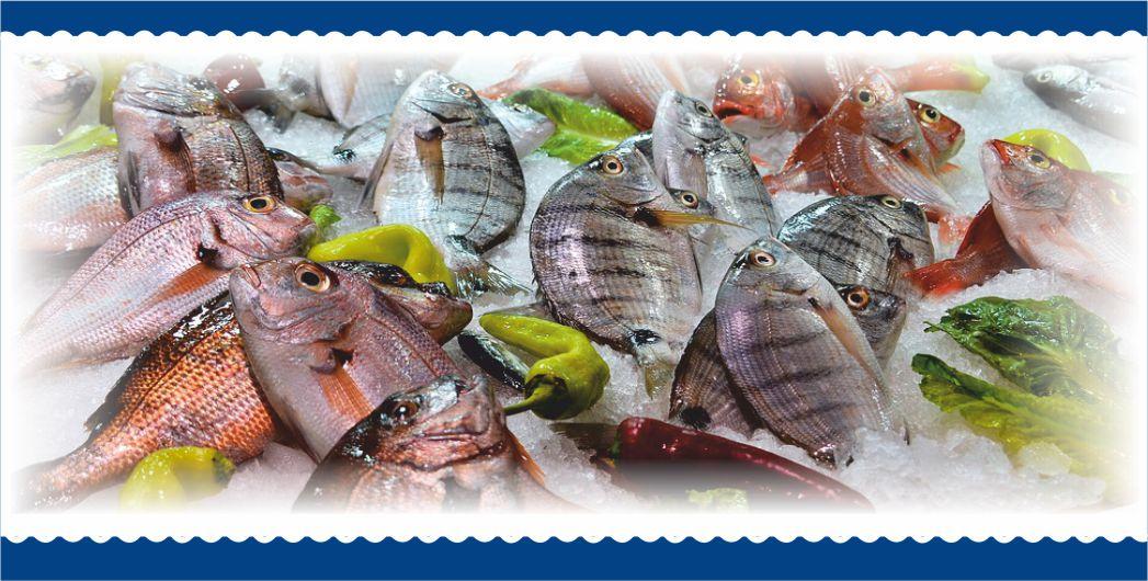 pesce fresco mare azzurro alcamo