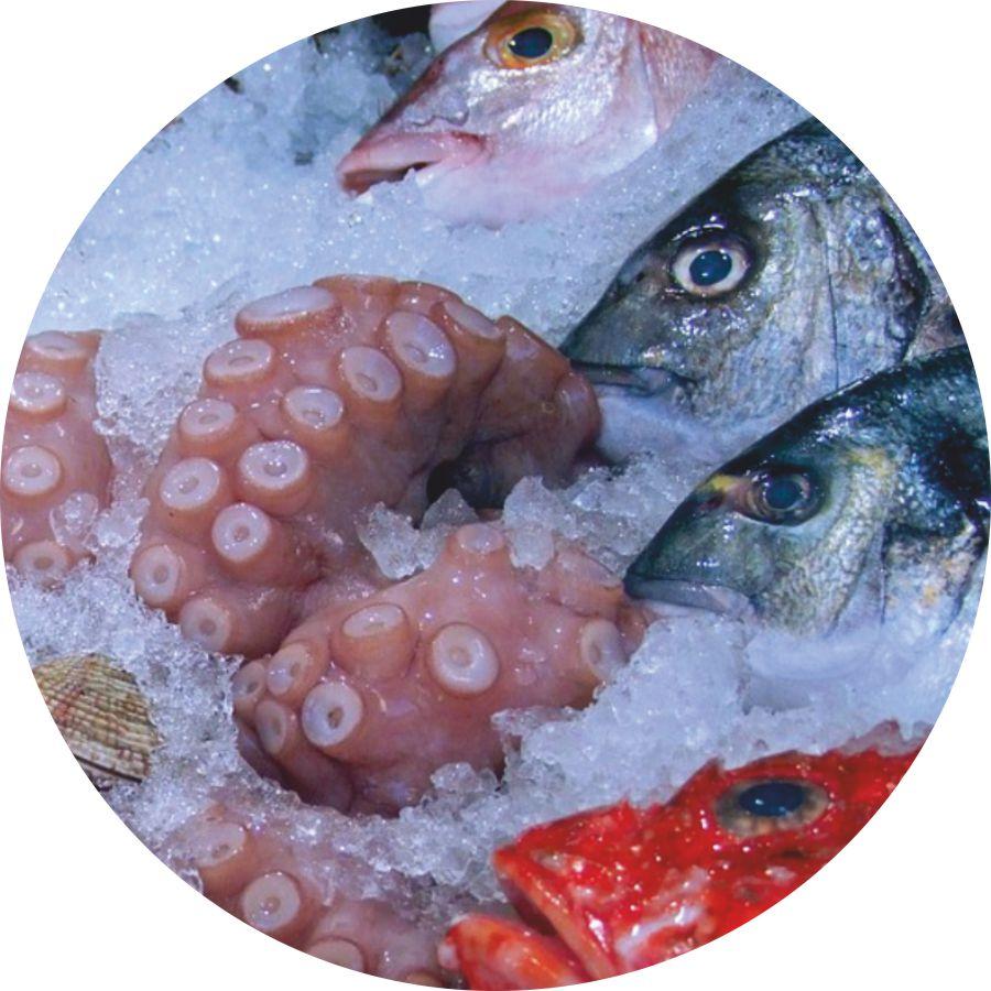 pesce fresco lacamo