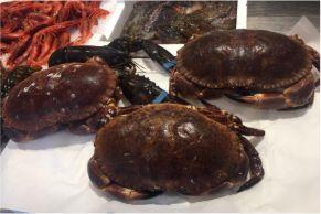 vendita granchi pescheria mare azzurro alcamo