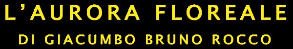 aurora floreale logo