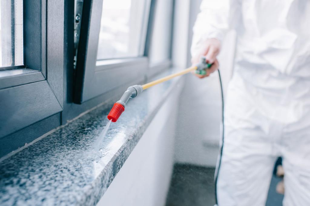 servizi di disinfezione e sanificazione
