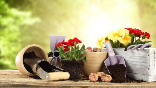 ditta di giardinaggio Ragusa