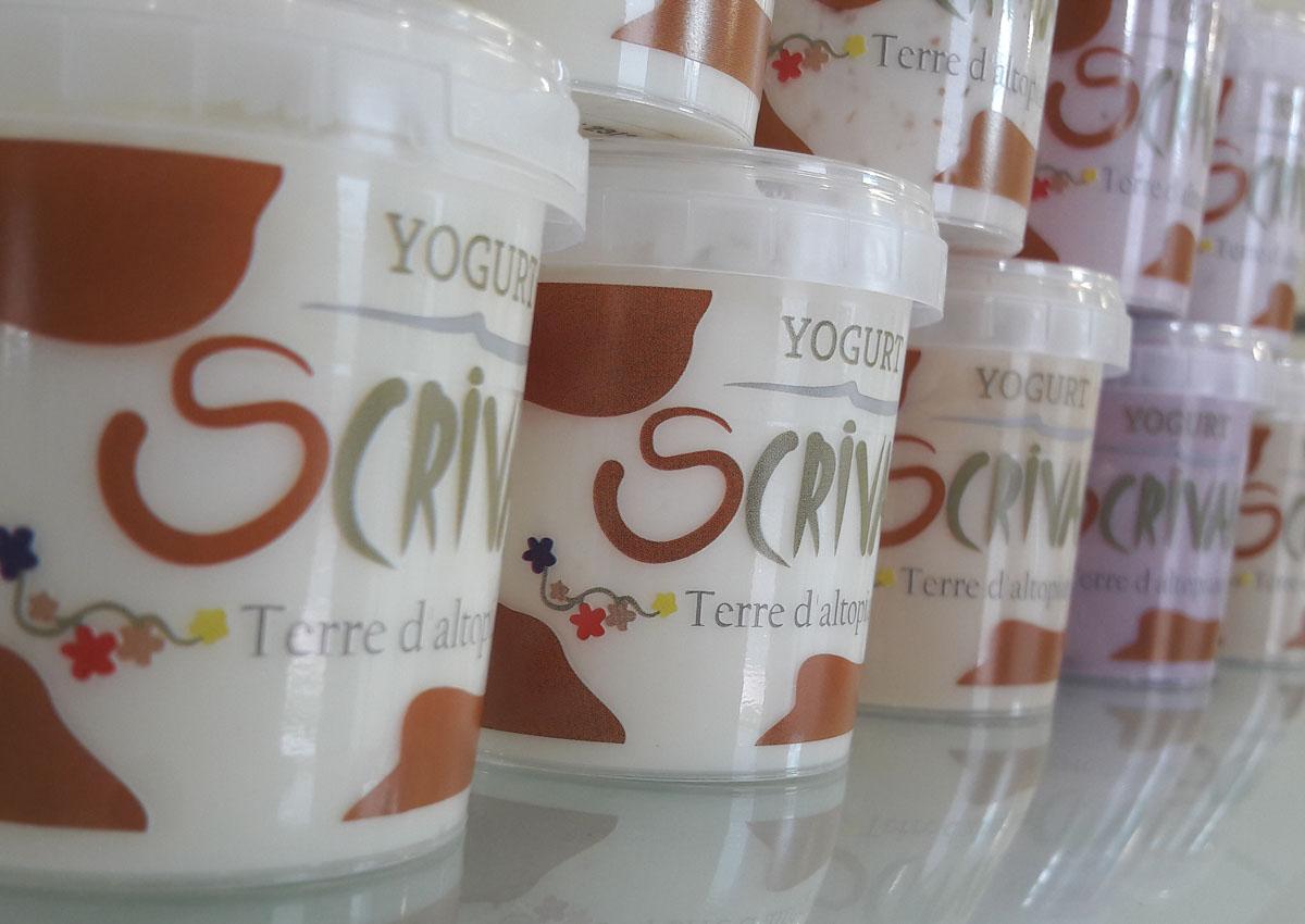 Formaggi e derivati, yogurt e gelati