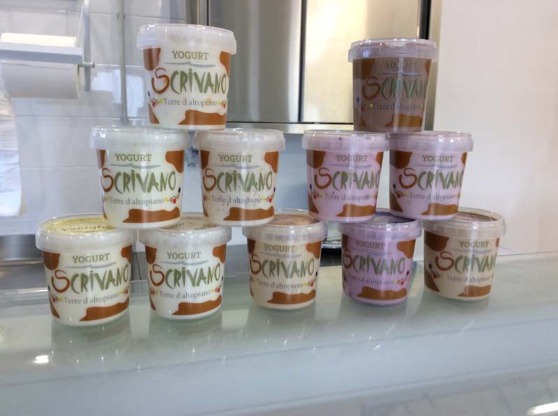 yogurt artigianale