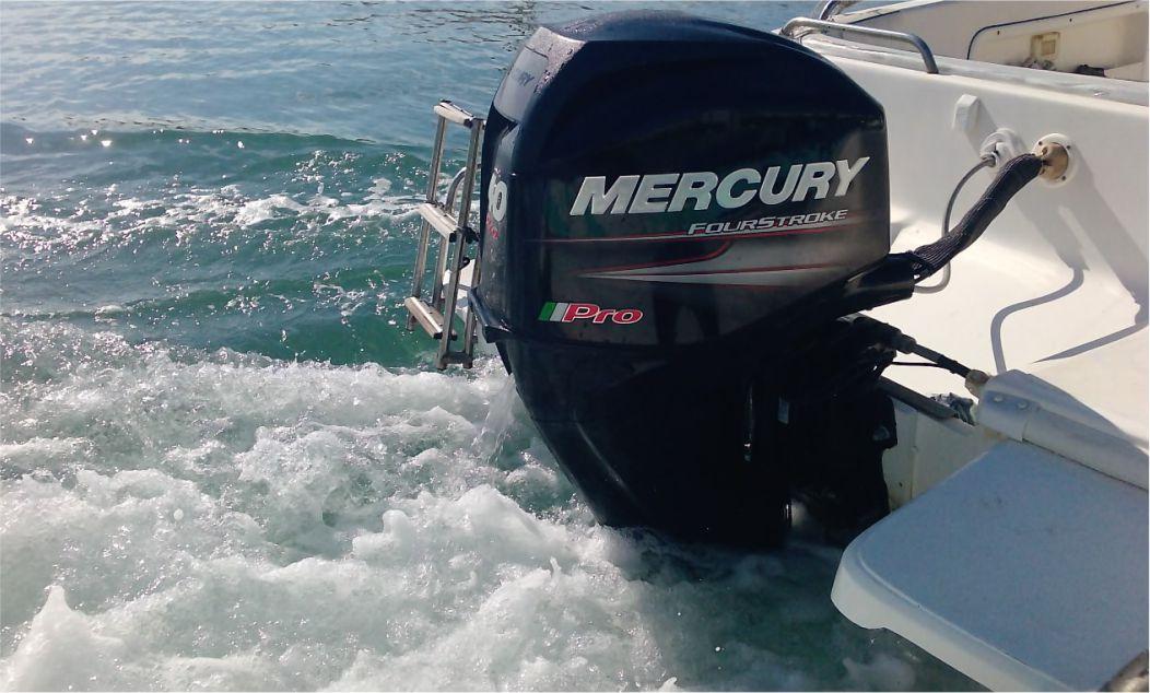 de filippi centro autorizzato mercury merCruiser trapani
