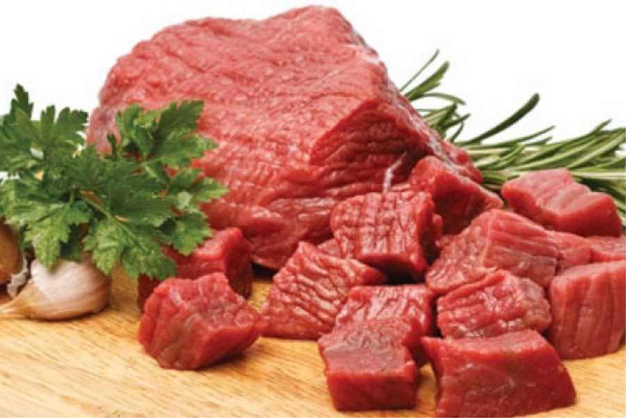 Fornitura Distribuzione Vendita Carni bovine Arma di Taggia Imperia Savona Costa Azzurra | vendita all'ingrosso ed al dettaglio di Carne fresca e Carne congelata Carne surgelata