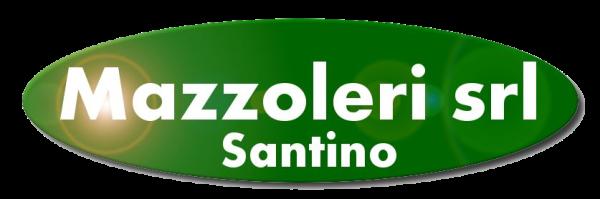 www.mazzolerisrl.it