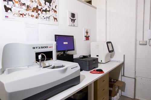 laboratorio veterinario milano