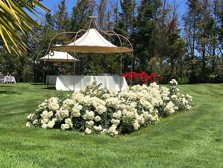 ristorante con giardino terralba
