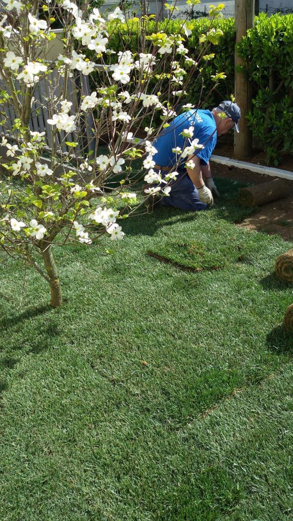 lavori giardinaggio treviso