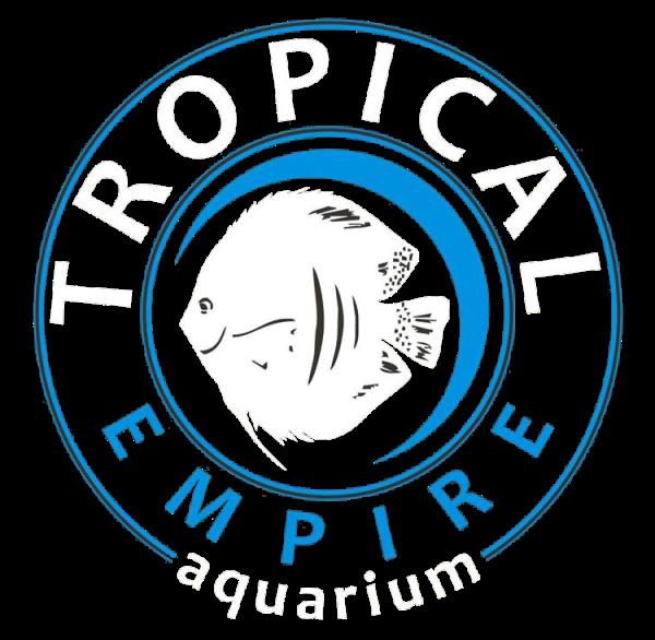 Tropical Empire a San Cipirello Palermo