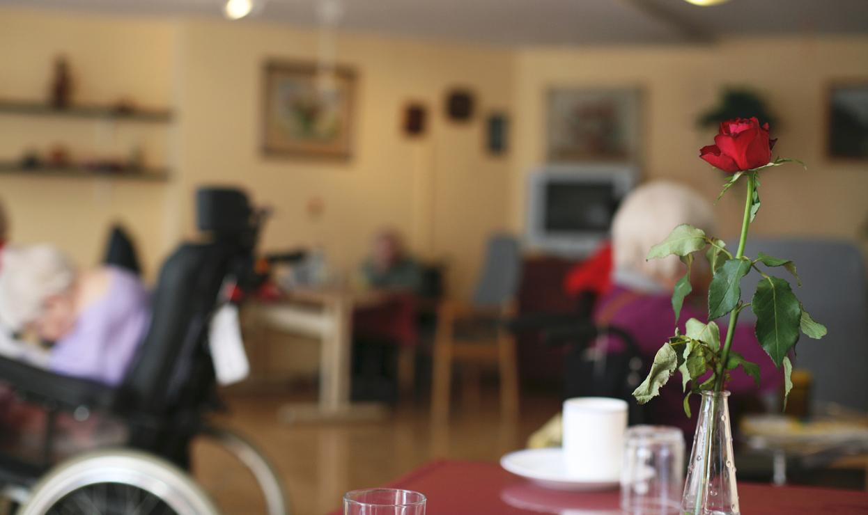 Soggiorni per Anziani Casa Famiglia Iride a Ferrara