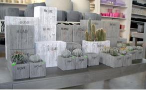 cesti in vimini per piante bergamo