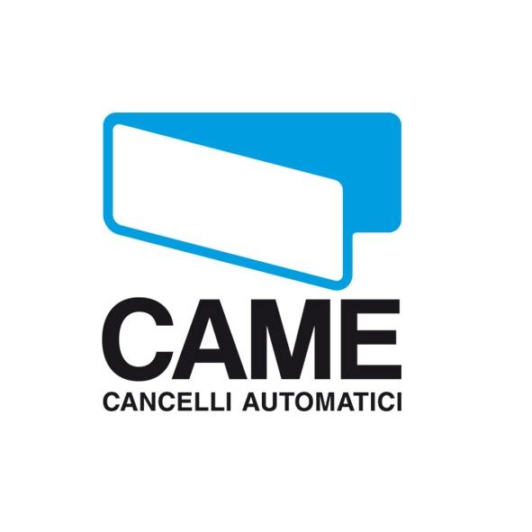 Came Cancelli Automatici
