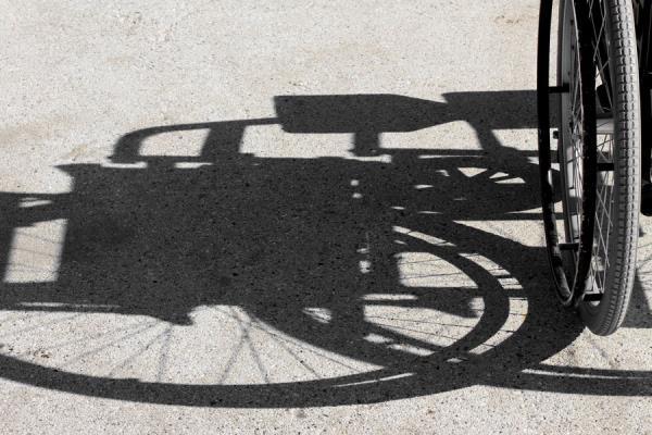 noleggio carrozzine Alpignano