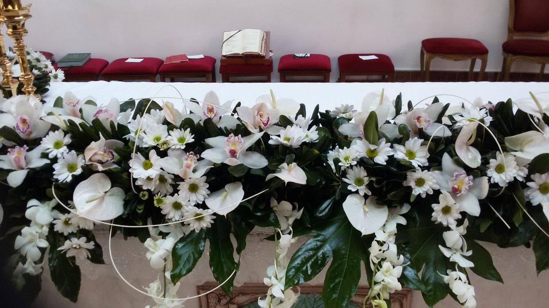 Piante e fiori di Antonio D'Agostino (PA)
