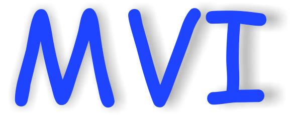 www.mvisrl.it