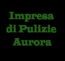 www.impresadipulizieaurora.com