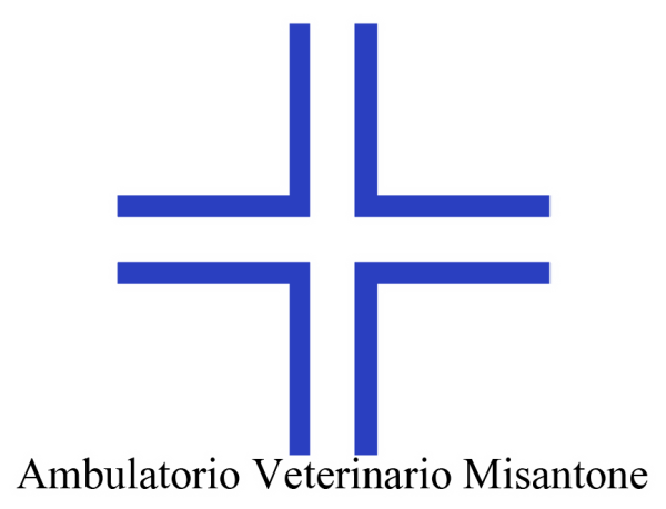 Ambulatorio Veterinario Misantone a Teramo