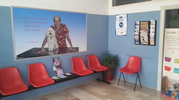 Sala di Attesa Ambulatorio Veterinario Misantone a Teramo