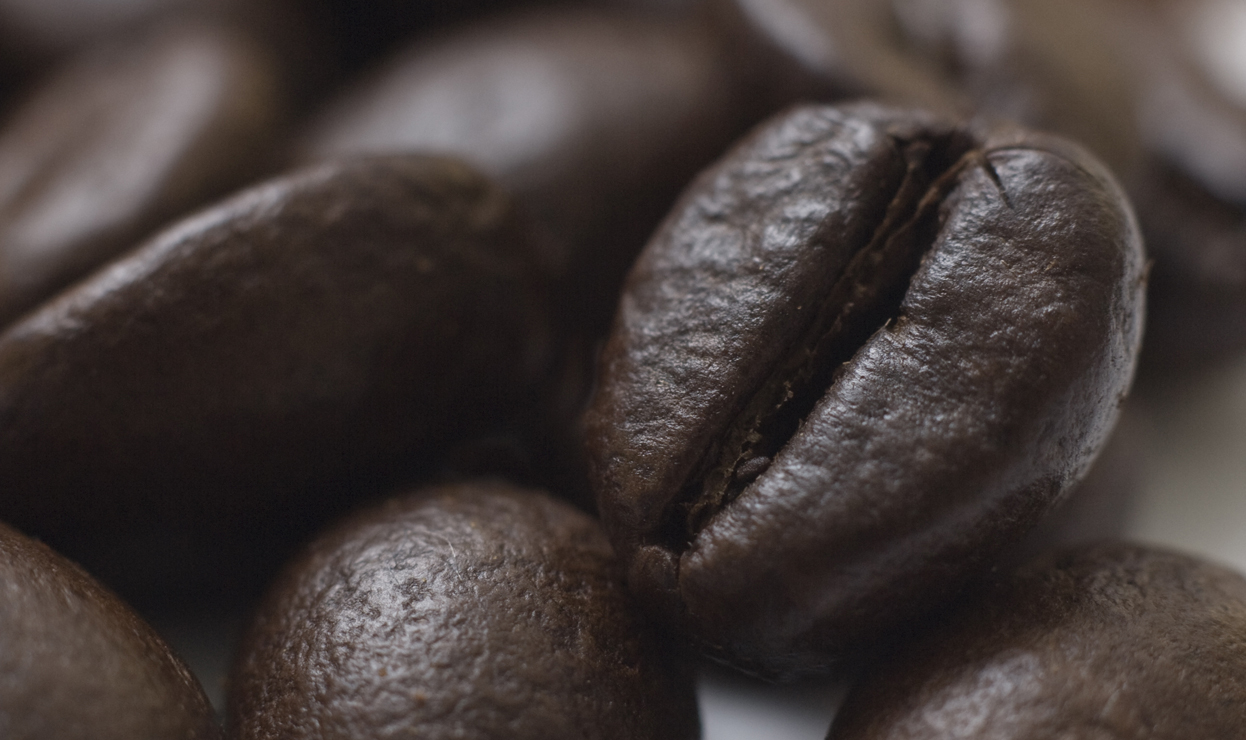 Sistemi per Cialde Caffè Gus Caffè a Roma