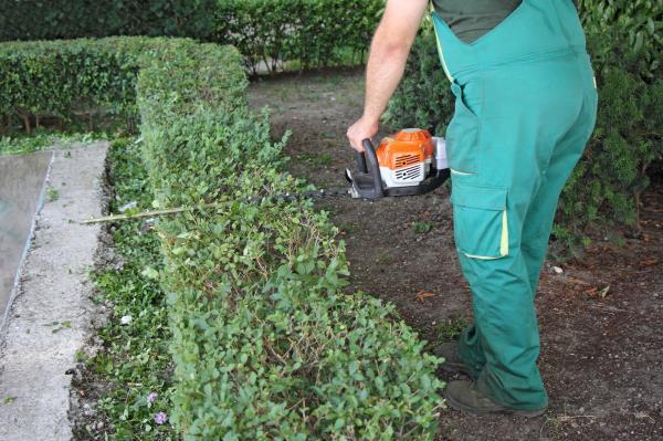 Giardinaggio Ciampino Roma