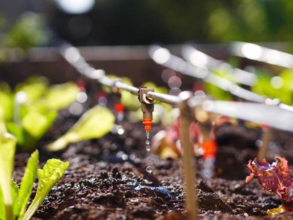 Impianti di irrigazione treviso