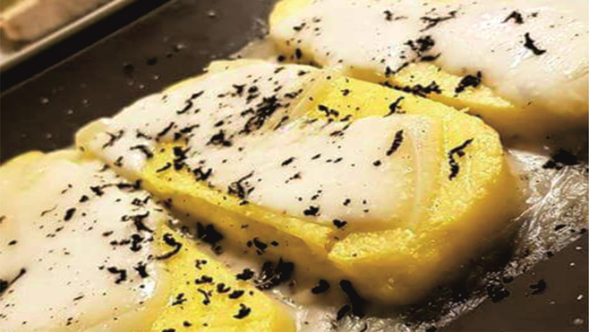 degustazione tartufi urbino