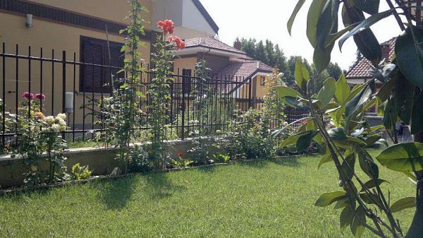 giardinaggio Torino